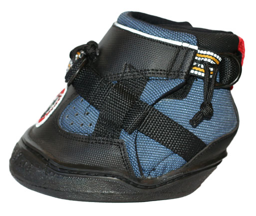 Equine Jogging Shoes   Horse Boot Fitting